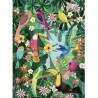 """Petit Monkey affiche """"rain forest birds"""" (50x70cm)"""